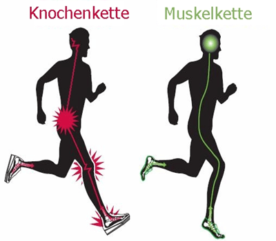 Vorfußlaufen: Muskelkette, statt Knochenkette